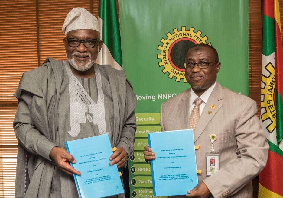Image result for Ondo govt, NNPC to establish cassava to Ethanol factory
