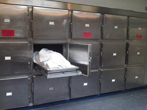 Image result for mortuary fridge